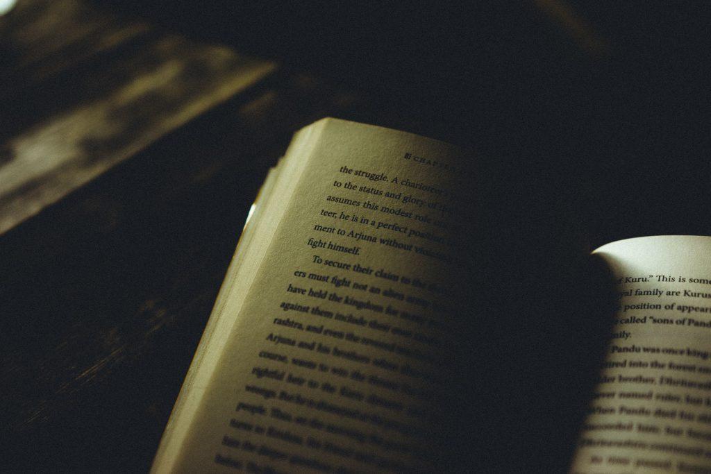 Novela gótica contemporánea : La dama número 13