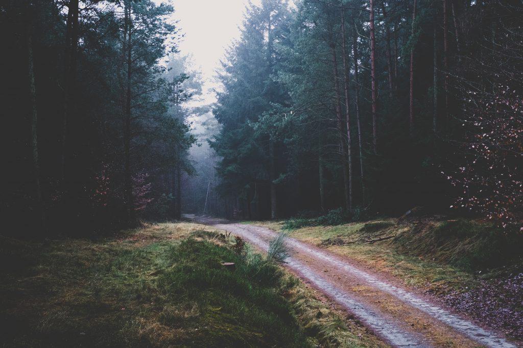 Novela gótica contemporánea : Rebeca